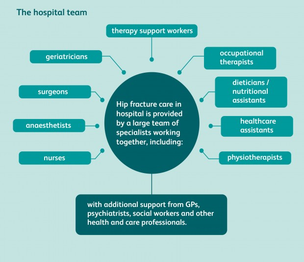 Hip fracture care hospital teams include: geriatricians, surgeons, anaesthetists, nurses, physiotherapists, occupational therapists, dieticians, healthcare assistants, therapy support workers, supported by GPs, psychiatrists, social workers and more.