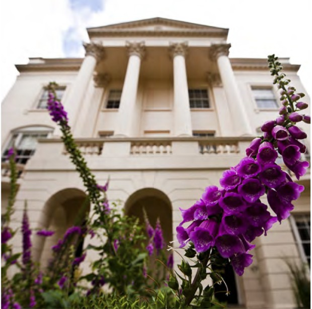 Front of William Harvey House with purple flower in foreground