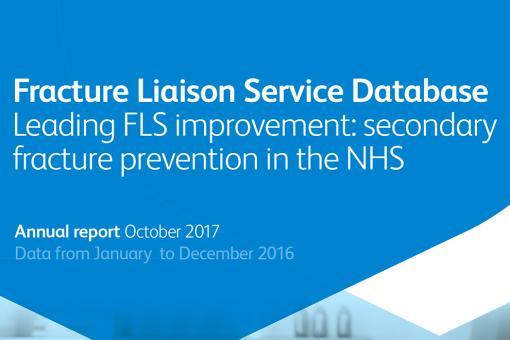 FLS-DB audit report cover