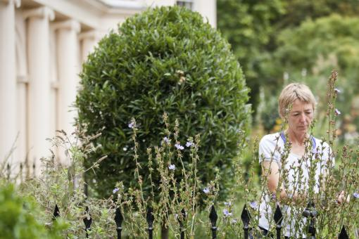 Head gardener Jane Knowles tending to a plant