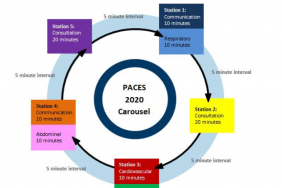 PACES carousel