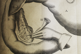 Engraved illustration of experiments on the pancreas