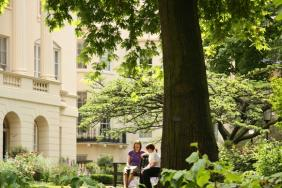 The garden's plane tree with people sitting on a bench