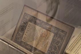 The exhibition 'Scholar, courtier, magician: the lost library of John Dee' installed in the RCP building.