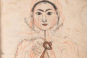 Mansur's Anatomy
