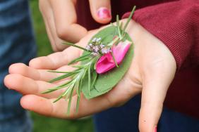 Photograph of herbs and flowers in a child's hand