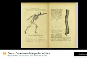 Screenshot of Precis d'anatomie a l'usage des artistes in the UK Medical Heritage Library via the Internet Archive