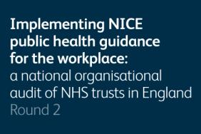 Implementing NICE public health guidance for the workplace 2013 – round 2