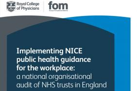 Implementing NICE public health guidance for the workplace 2011 – round 1